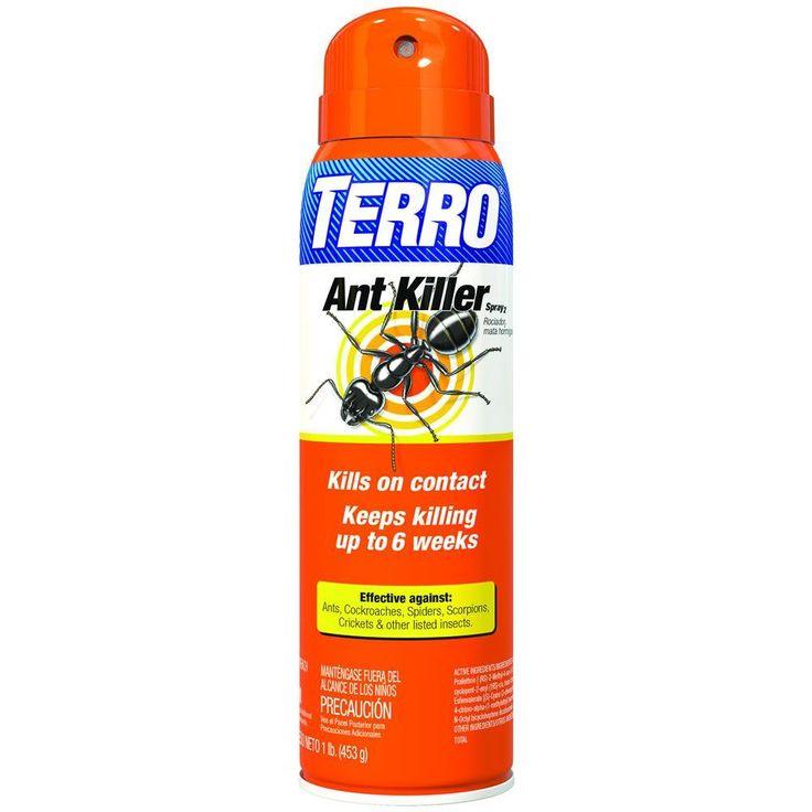16 oz. Ant Killer Aerosol Spray