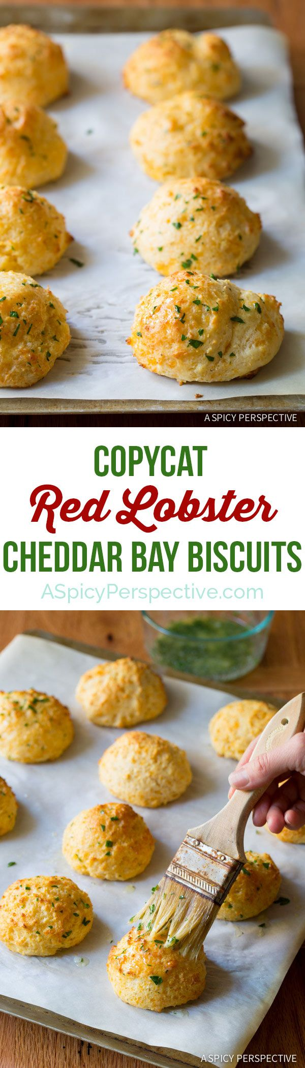 Better Than Red Lobster Cheddar Bay Biscuits on ASpicyPerspective.com