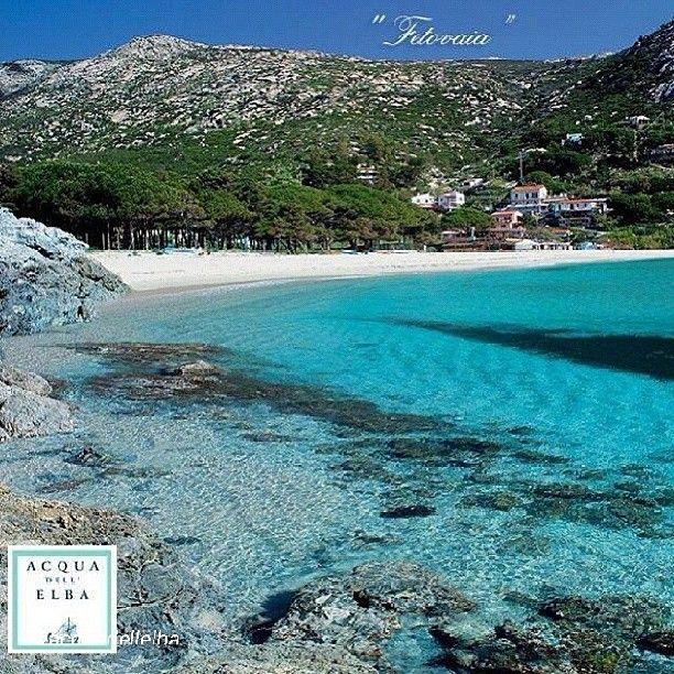 Isola d'Elba TuscanyAgriturismoGiratola Isola d'elba