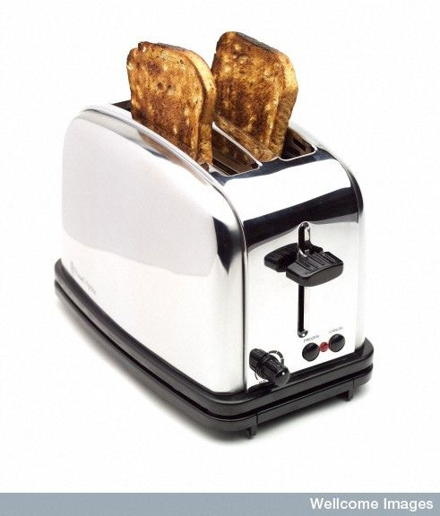 How often do you clean your toaster? For most of us, cleaning out the toaster is something that we often neglect. (Or don't really know how to do!) In this blog post, we will provide tips on how to clean both traditional toasters and toaster ovens. Need more than just that toaster cleaned? Visit www.mollymaid.com today!