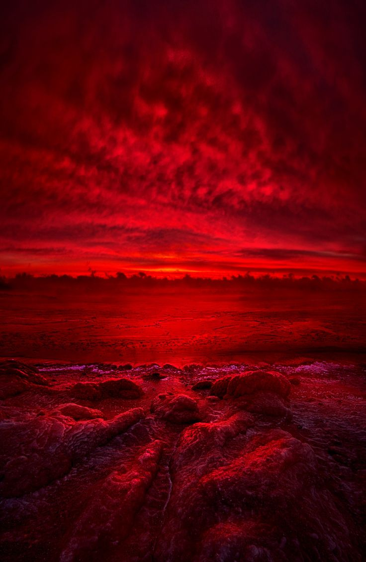 661 best color red images on pinterest colour red red and