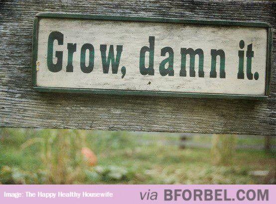 Encouraging Garden Sign…