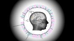 Um experimento realizado por cientistas da Universidade de Washington está abrindo espaço para avanços na tecnologia de leitura mental. Com o uso de implantes cerebrais e softwares sofisticados, …
