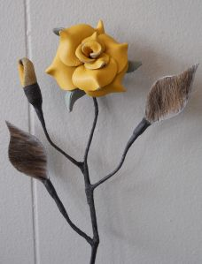 Желтая кожа Rose