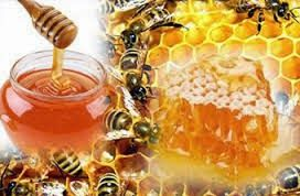 7 Benefits of honey since 1.400 years ago