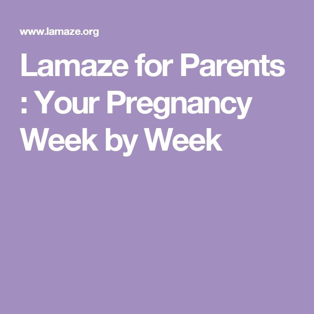 Lamaze for Parents : Your Pregnancy Week by Week