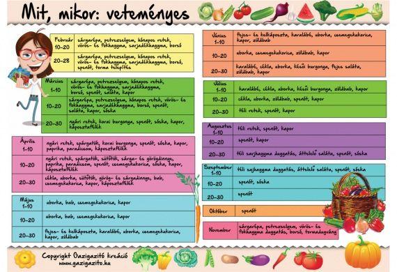 Vetésnaptár - zöldségek mit, mikor - gazigazito.hu