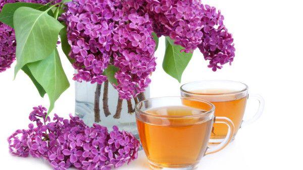 šeříkový syrup jako sladidlo do čaje