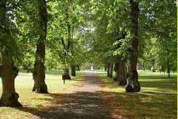 Puistossa opetuskokonaisuus Kuutti 2 ympäristötiedon kirja  2) Puistokoulu http://www.hel.fi/static/hkr/julkaisut/puistokoulu_2.pdf