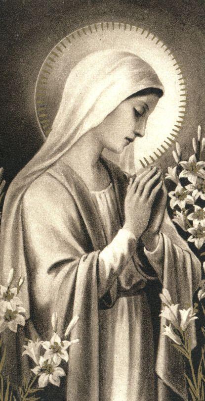 « Salut, ô blanc Lis de la Trinité resplendissante et toujours tranquille ! Salut, ô Rose de beauté céleste ! C'est de vous que le Roi des cieux a voulu naître ; c'est de votre lait qu'il a voulu être nourri ; daignez aussi nourrir nos âmes des divines influences.» - Prière de sainte Gertrude; la Vierge lui a promis que quiconque la saluerait ainsi se verrait consolé par elle de façon spéciale et particulièrement à l'heure de sa mort