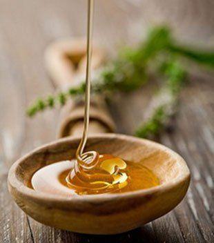 As palavras, como as abelhas, têm mel e ferrão... O que não for bom para a colmeia também não é bom para a abelha... As ABELHAS E VESPAS  sugam as mesmas flores, mas não sabem encontrar nelas o mesmo mel...