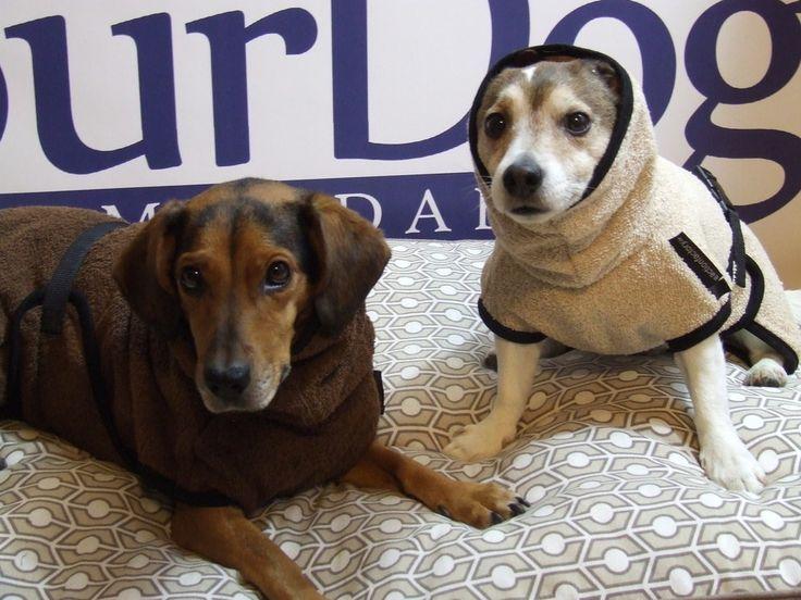Hunde-Trocken- und Bademantel aus Baumwoll-Frottee, 29,90€