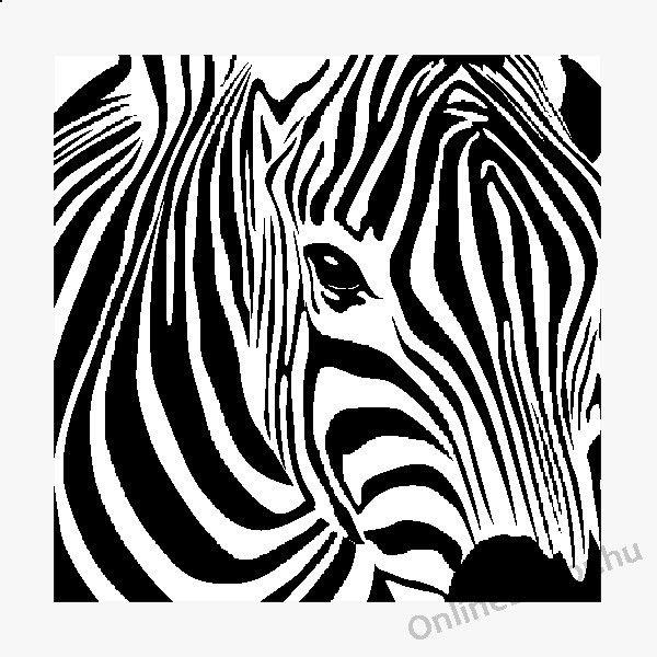 zebra minta - Google keresés