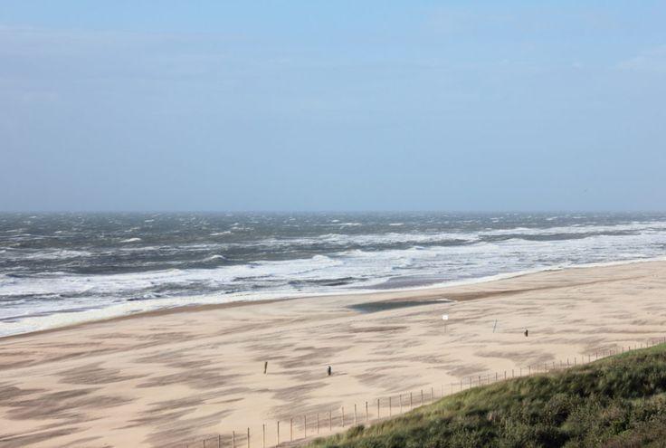 beach in wind