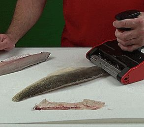 2942 best images about unique gifts on pinterest for Electric fish skinner