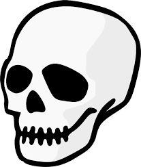 Image result for skull head