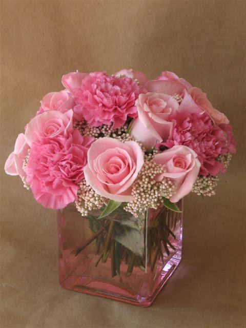 Best pink carnations ideas on pinterest