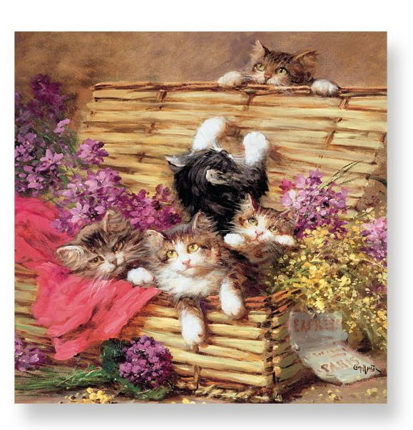 Playing Kitties Lautasliina 33 x 33 cm 20 kpl - Astiakauppa.fi