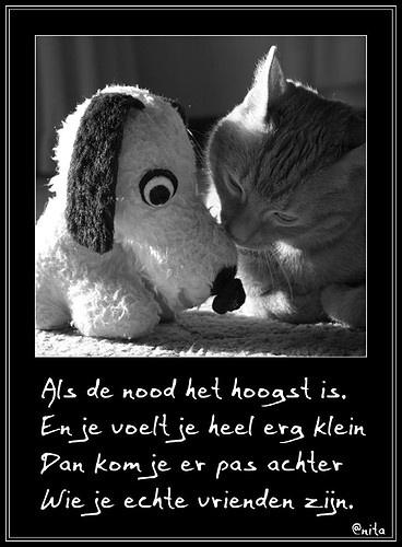prachtige gedichten en spreuken en wijze gezegden 13 best Liefde images on Pinterest | Dutch quotes, Beautiful words  prachtige gedichten en spreuken en wijze gezegden