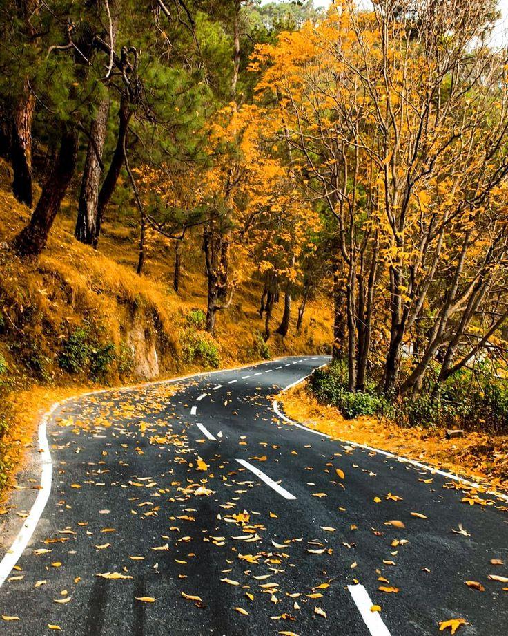 фотографии осень дороги теплая