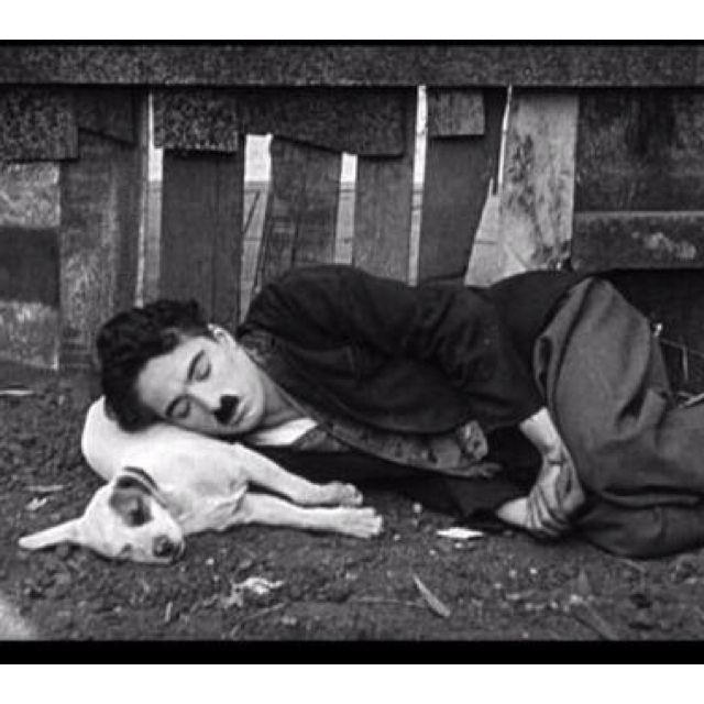 """Il migliore amico dell'uomo -""""man's best friend"""" Chaplin and his..."""