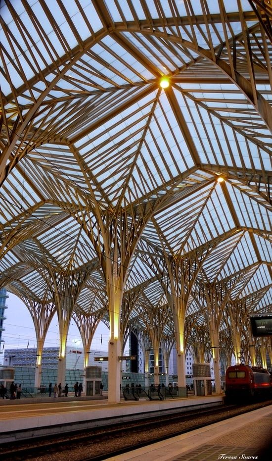 The Oriente train station is Lisbon It was built by Santiago Calatrava and features a glass and metal roof that's arranged to resemble geometric trees.