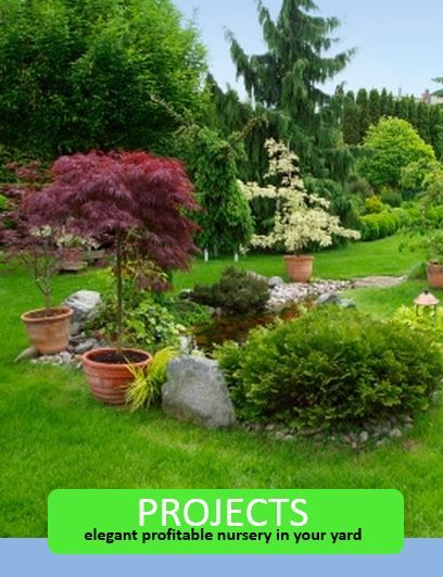 17 best images about yard venture on pinterest gardens for Landscape design firms