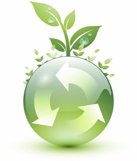 medio ambiente (5)