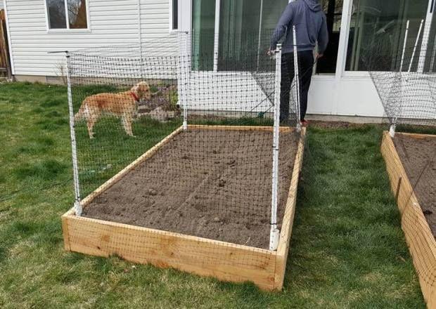 Best 25 Raised garden bed design ideas on Pinterest Raised bed