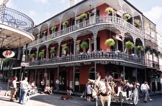 new orleans-proud to be a y'at!