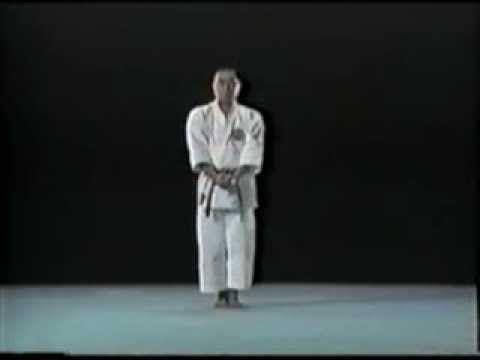 Bassai dai Kata of Shito-Ryu - YouTube. with multiple perspectives, expleined with bunkai.