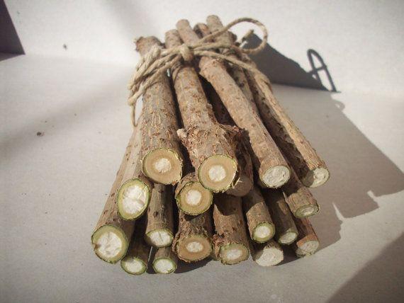 Elderberry Twigs,Elder Wood Sticks 20 pcs,Nature Home Decor,Wood Craft Supply,Elder Branches,Elder Wand