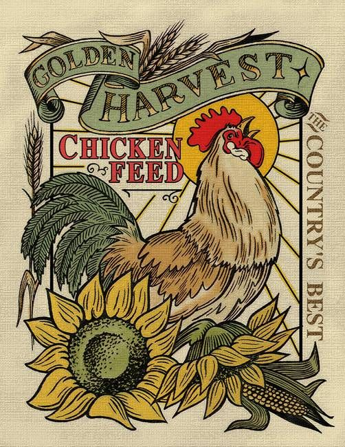 """""""Chicken Feed"""" by Roger Dullinger: Illustration // Buy prints, posters, canvas and framed wall art directly from thousands of independent working artists at Imagekind.com."""