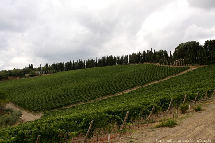 Autunno nel Chianti storico: la bella stagione | Frammenti di Toscana - Itinerari e idee per visitare la Toscana