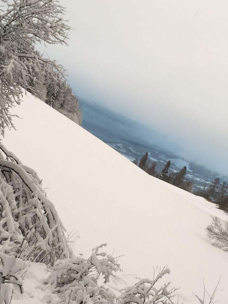 4 juledag i Veldre. Foto: Hege Wølner