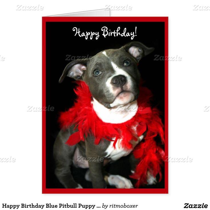 Happy Birthday Blue Pitbull Puppy Greeting Card Happy Birthday Blue Happy