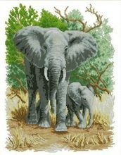 55*43cm Needlework,DIY DMC Cross stitch,Sets For Embroidery kits,Precise Printed elephants Patterns Counted Cross-Stitching(China (Mainland))