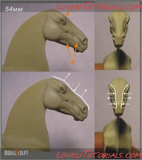 Realistic modeling of horse head...scroll about halfway down page for photo tut......also note that photo of steps is in incorrect order