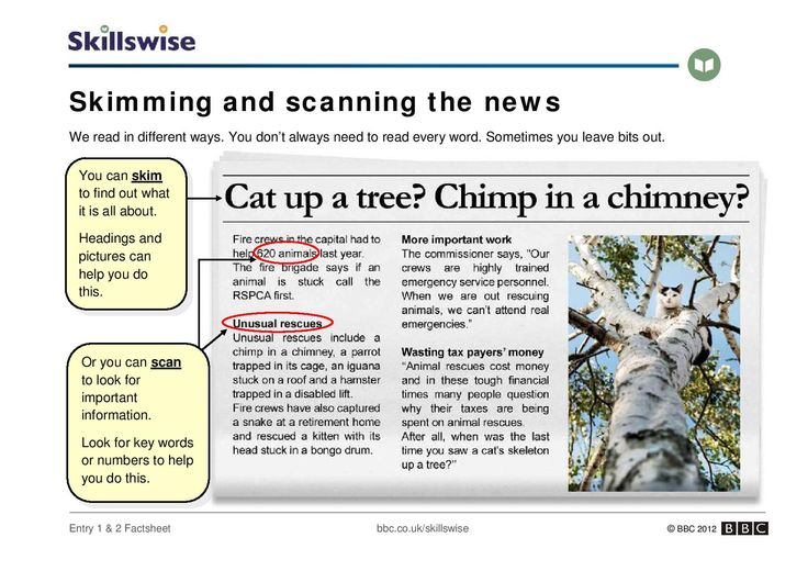 An introduction to skimming and scanning a newspaper report.