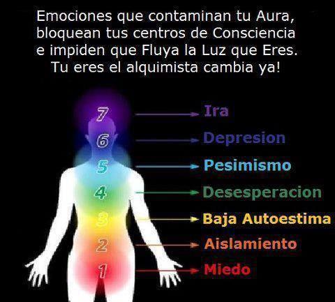 Aura y emociones. Emociones negativas que contaminan los Chakras.- El aura es el campo de energía que se irradia alrededor del cuerpo. Está creado por la producción de energía de los chakras; cada uno de ellos contribuye a la sanación y el mantenimiento del campo aúrico. Cuando los chakras están mínimamente abiertos y/o dañados, el aura puede mostrarse gris y débil. Por lo tanto, si gozas de buena salud y estás razonablemente abierto a tus emociones, tendrás unos chakras más activos y…
