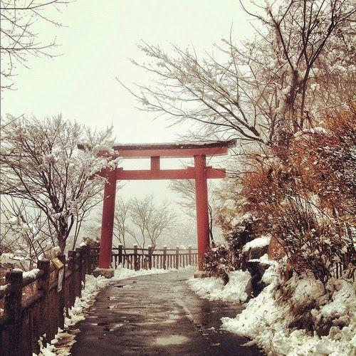 Thoughts of an Otaku