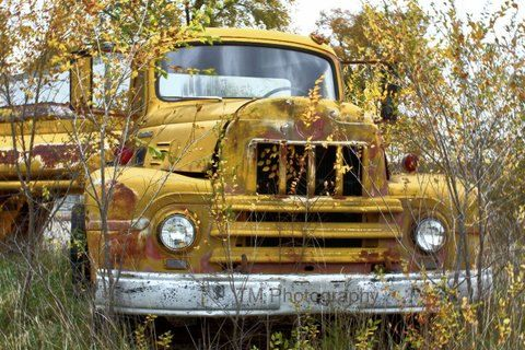 old truck photography old truck vintage truck by turquoisemoon, $35.00