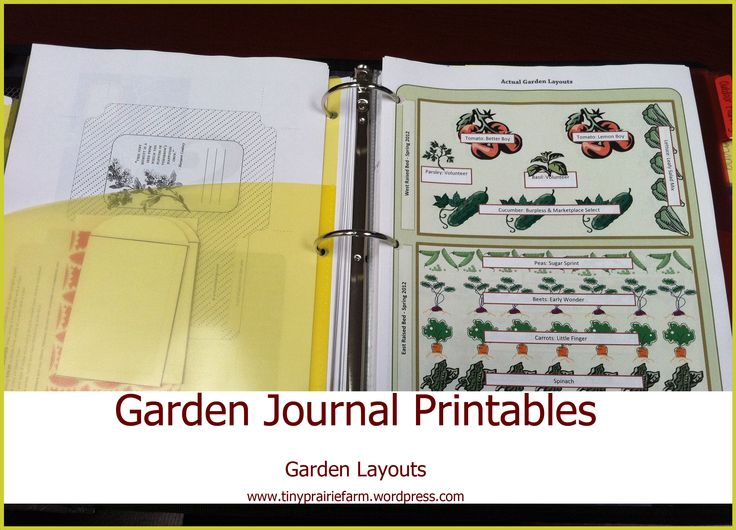 50+ best garden journals images by Debbie Royer on Pinterest ...