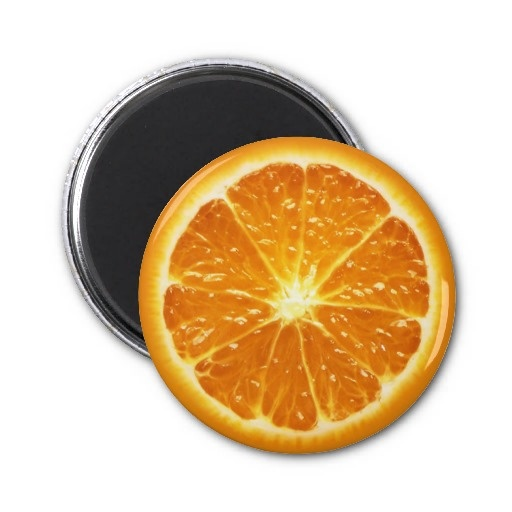 Fruit Magnet Series -Orange-