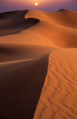 Visit the #deserts of #AbuDhabi and enjoy the sunsets by the #Sand dunes!  BOOK NOW www.etihadairways.com