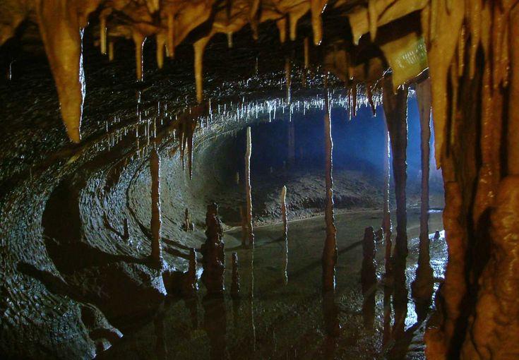 Topolnita Cave, Mehedinti Countz, Romania. The Odalisque Gallerz