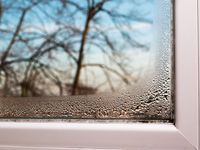 Schluss mit Kondenswasser am Fenster! 5 Tipps für Wischmuffel: http://eatsmarter.de/blogs/green-living/kondenswasser-am-fenster