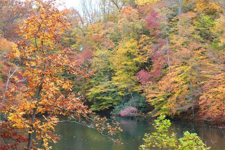 Laurel Lake, Breaks Interstate Park, Breaks, Virginia