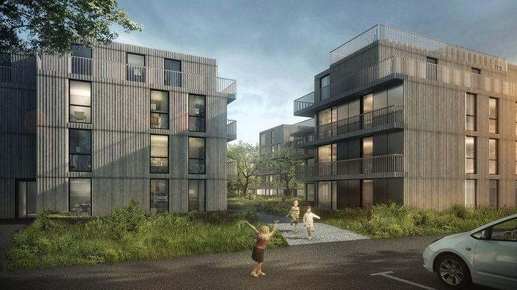 Arcadia am Albis - Hosoya Schaefer Architects