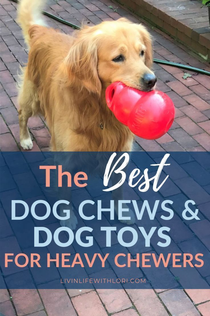 Best Dog Chews And Dog Toys For Heavy Chewers Best Dog Toys Dog